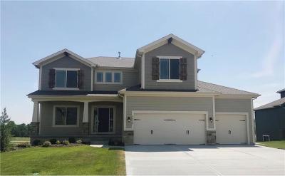 Olathe Single Family Home For Sale: 12247 S Pine Street