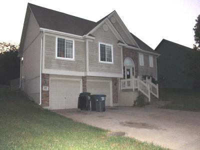 Pleasant Hill MO Single Family Home For Sale: $119,600