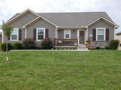 Grain Valley MO Single Family Home For Sale: $245,000