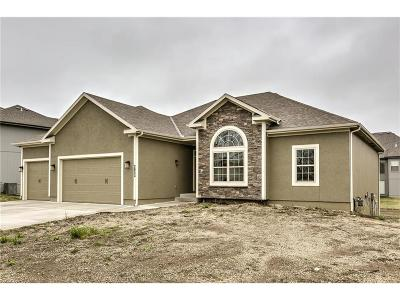 Lee's Summit MO Single Family Home Contingent: $361,900