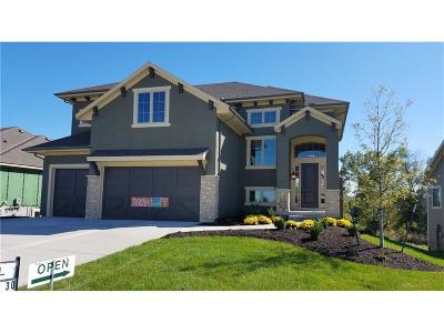 Overland Park Single Family Home Model: 9117 W 178th Street