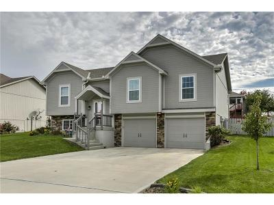 Raymore MO Single Family Home Show For Backups: $230,000