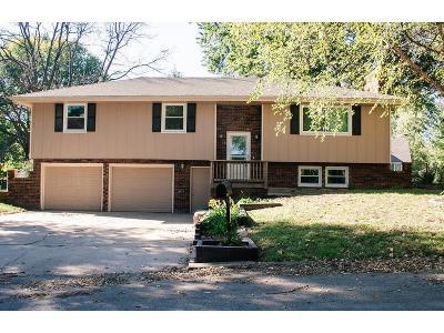 Kearney Single Family Home For Sale: 1402 Heather Street