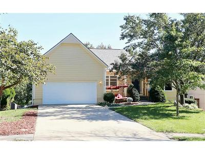 Shawnee Single Family Home For Sale: 5009 Anderson Street