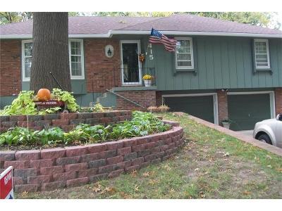 Liberty Single Family Home For Sale: 415 Gordon Avenue