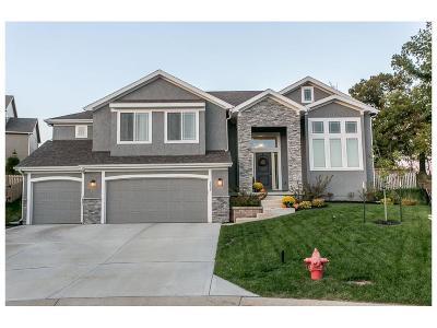 Blue Springs Single Family Home For Sale: 1017 SE Crimson Court