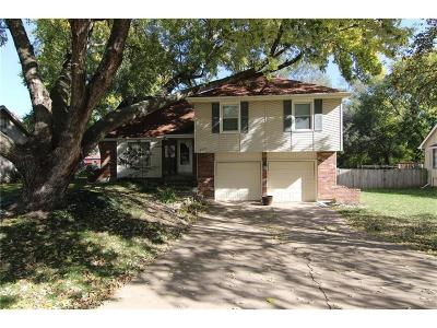 Shawnee Single Family Home For Sale: 6305 Greenwood Street