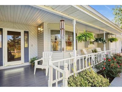 Edwardsville Single Family Home For Sale: 940 Kouns Lane