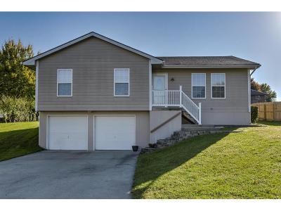 Kearney Single Family Home For Sale: 1405 Susan Street