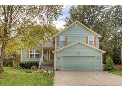 Kansas City Single Family Home For Sale: 205 NW 110th Street