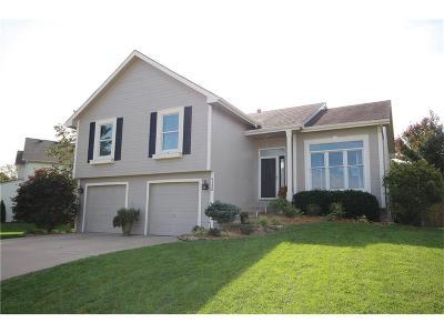 Kansas City Single Family Home For Sale: 9130 N Oregon Avenue