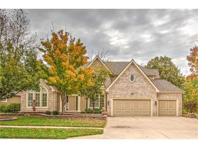 Parkville Single Family Home For Sale: 8029 Clearwater Drive