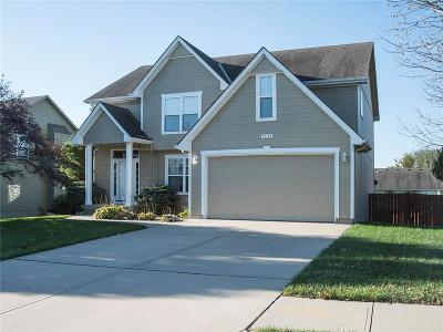 Blue Springs Single Family Home Show For Backups: 1131 SE Skyview Drive