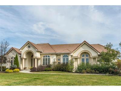 Smithville Single Family Home For Sale: 6200 NE 142nd Street