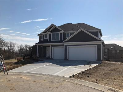 Grain Valley Single Family Home For Sale: 903 NW Persimmon Court