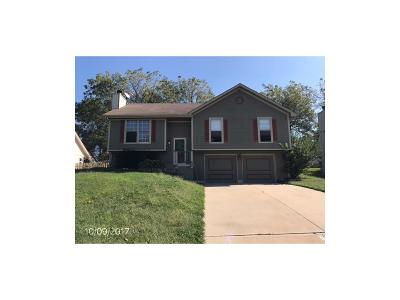 Lee's Summit MO Single Family Home Auction: $128,000