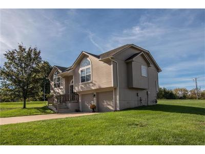 Grandview Single Family Home Show For Backups: 12627 Fountain Lake Circle