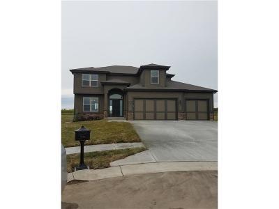 Kansas City Single Family Home For Sale: 10022 NE 101 Terrace