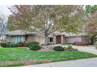 Lee's Summit Single Family Home For Sale: 517 NE Lake Pointe Circle