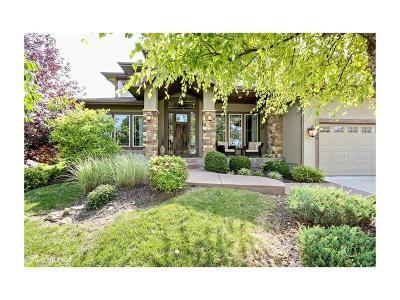 Lee's Summit Single Family Home For Sale: 1709 NE Lashbrook Drive