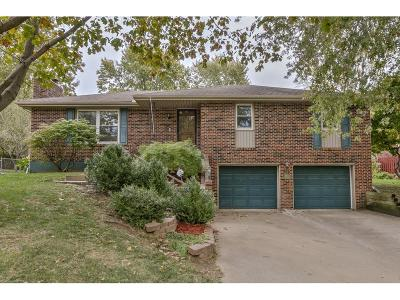 Blue Springs Single Family Home For Sale: 1200 SW 18th Street