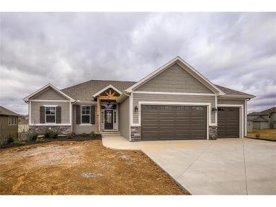 Olathe Single Family Home For Sale: 21822 W 177th Street