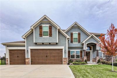 Platte City Single Family Home For Sale: 17630 N Alder Court