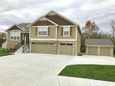 Pleasant Hill MO Single Family Home For Sale: $335,000