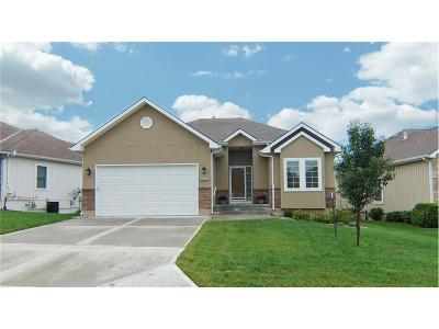 Lee's Summit MO Single Family Home For Sale: $259,900