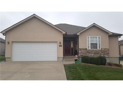 Warrensburg Single Family Home For Sale: 1219 Half Day Drive