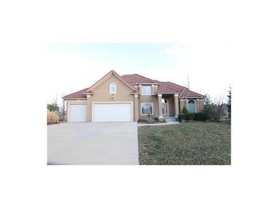Lenexa Single Family Home For Sale: 9018 Pine Street