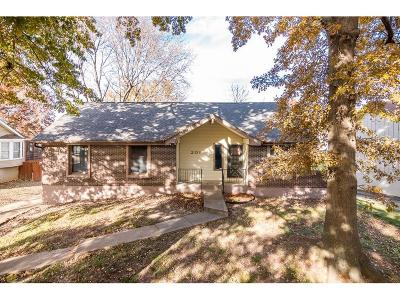 Blue Springs Single Family Home For Sale: 201 SE Princeton Place