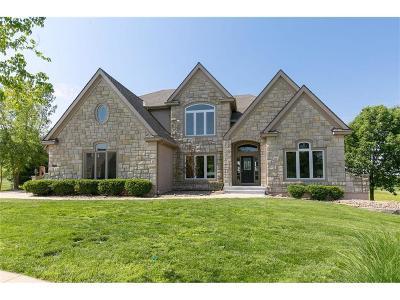 Lenexa Single Family Home For Sale: 9616 Vista Drive