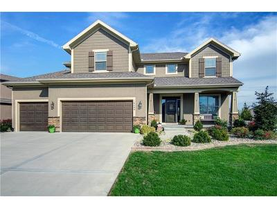 Olathe Single Family Home For Sale: 16409 S Brookfield Street