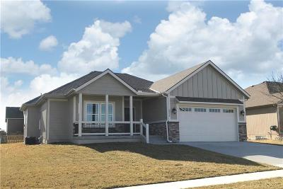 Blue Springs Single Family Home For Sale: 2216 NE Janessa Drive
