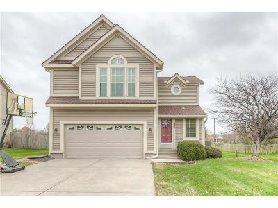 Overland Park Single Family Home For Sale: 15209 Marty Street