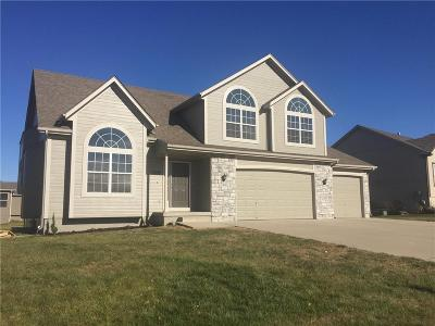 Raymore MO Single Family Home For Sale: $270,000