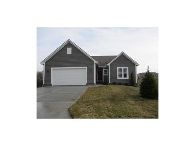 Louisburg Single Family Home For Sale: 1425 Glen Drive