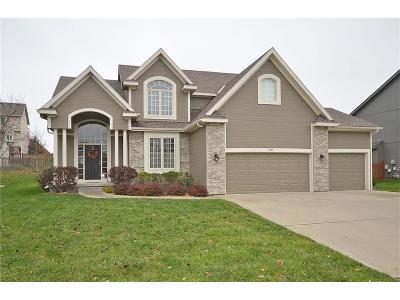 Kansas City Single Family Home For Sale: 7301 N Potter Avenue