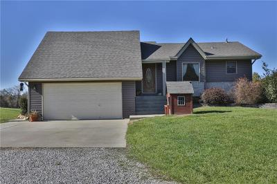 Grain Valley Single Family Home For Sale: 30601 Stony Point School Road