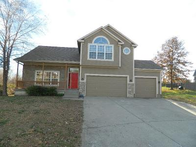 Raymore MO Single Family Home Show For Backups: $269,000