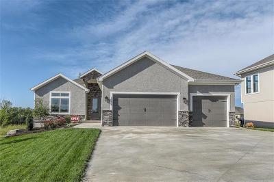 Lenexa Single Family Home For Sale: 24069 W 98th Street