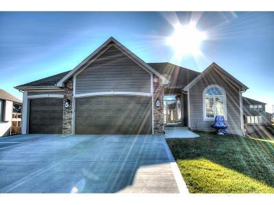 Kansas City Single Family Home For Sale: 4007 NE 90th Terrace