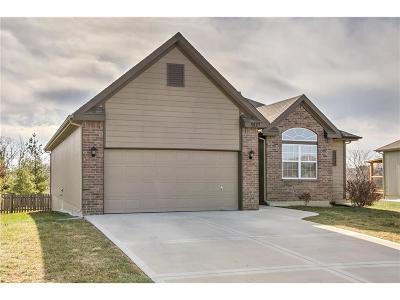 Kansas City Single Family Home For Sale: 9127 NE 103rd Street