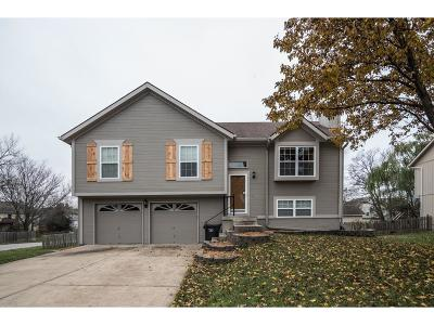 Greenwood MO Single Family Home Show For Backups: $175,000