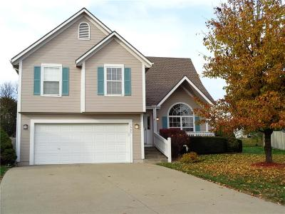 Warrensburg Single Family Home For Sale: 1303 Kimberly Drive