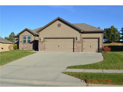 Kansas City Single Family Home For Sale: 3210 NE 79 Terrace