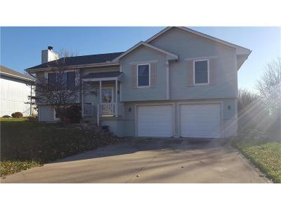 Raymore MO Single Family Home For Sale: $165,000