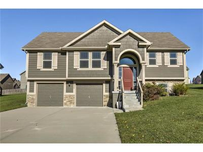 Kansas City Single Family Home For Sale: 8928 NE 116th Terrace