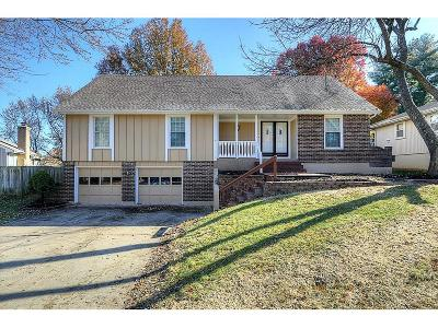 Blue Springs Single Family Home For Sale: 920 SW 19th Street